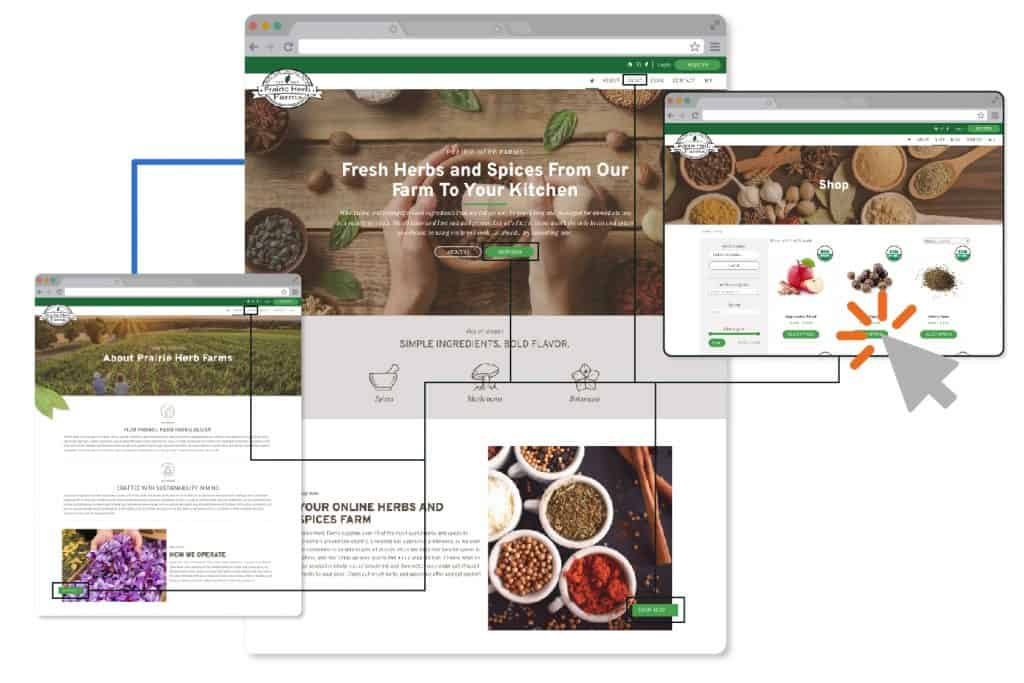 user experience, reno web design