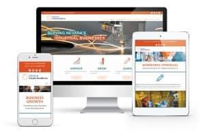 Website Lead Generation example NVIE