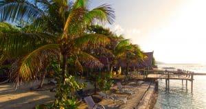 The Reef House Lodge, Roatan - Dive Resort Marketing